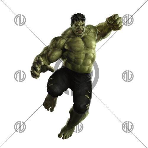 Hulk Fotoğrafı İndir